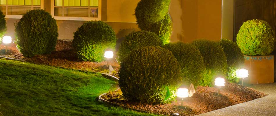 Professional landscape lighting installed at a home in Wrens, GA.