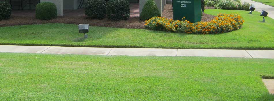 Homeowner in Waynesboro, GA with lawn service by Nichols Lawn Care.