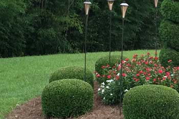 Louisville, GA property receiving fertilization and other lawn care services.